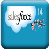 Misl salesforce